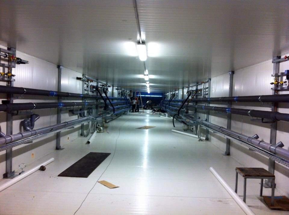 -Μηχανολογικός διάδρομος συσκευαστηρίου-Δίκτυα αποχέτευσης και αποπάγωσης στοιχείων